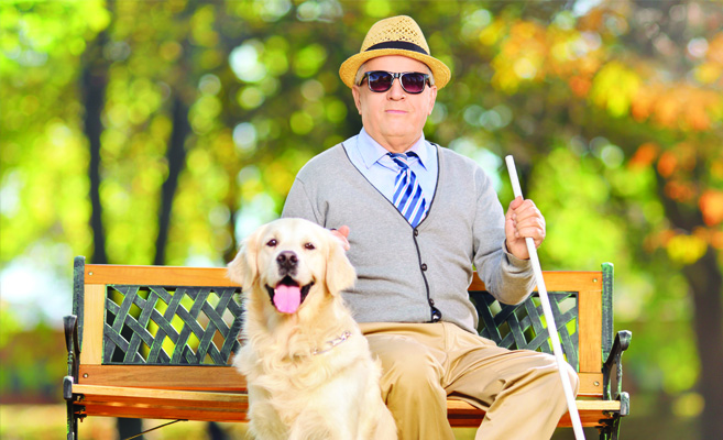 blind man with seeing eye dog in the park