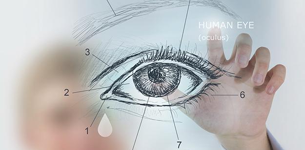 eye-illustration